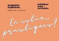 Prácticas extracurriculares y becas para titulados