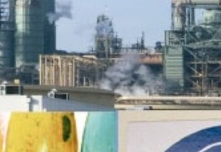 Foto Máster Gestión Integrada de la Calidad, Medio Ambiente y Prevención de Riesgos Laborales