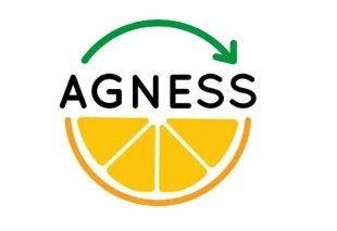 Foto Presentada la propuesta del proyecto AGNESS